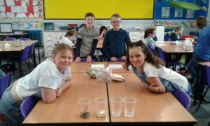 Year 5 WOW Day
