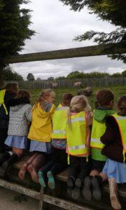 Our Trip To Peak Wildlife Park